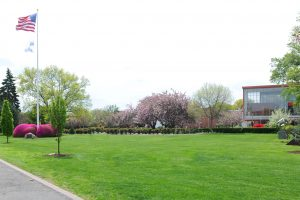 Flagpole Lawn at Adelphi is an open green space full of flowers and trees.