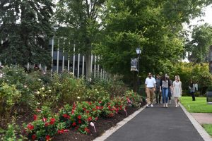 Students walking on our lush green campus pathway