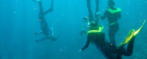 Students scuba-dive in Australia
