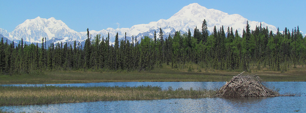 Archaeology in Alaska
