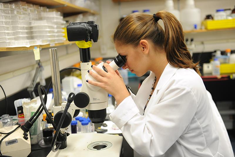 Woman in lab coat looks through microscope