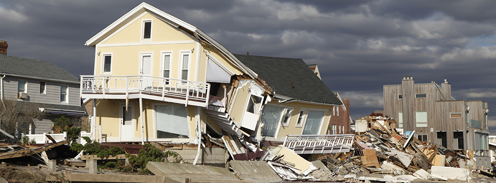 Resiliency and Emergency Services Cohort: Understanding Emergency Management Essentials