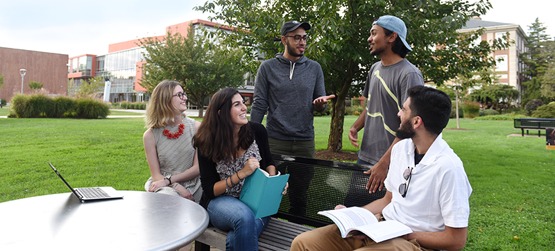 A diverse group of Adelphi students talk and study together at the garden City campus