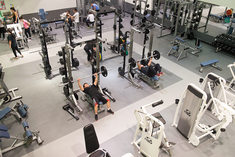 Adelphi University's weightlifting room