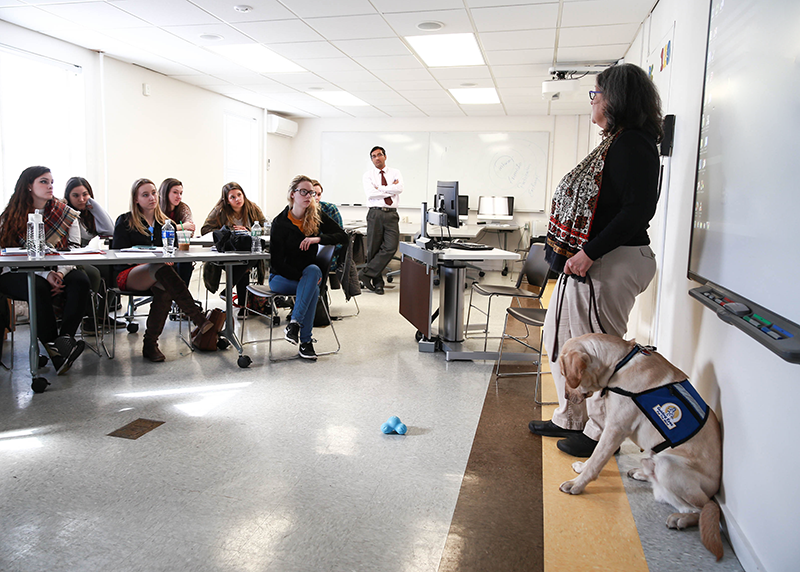 teaching a classroom at Adelphi with a guide dog
