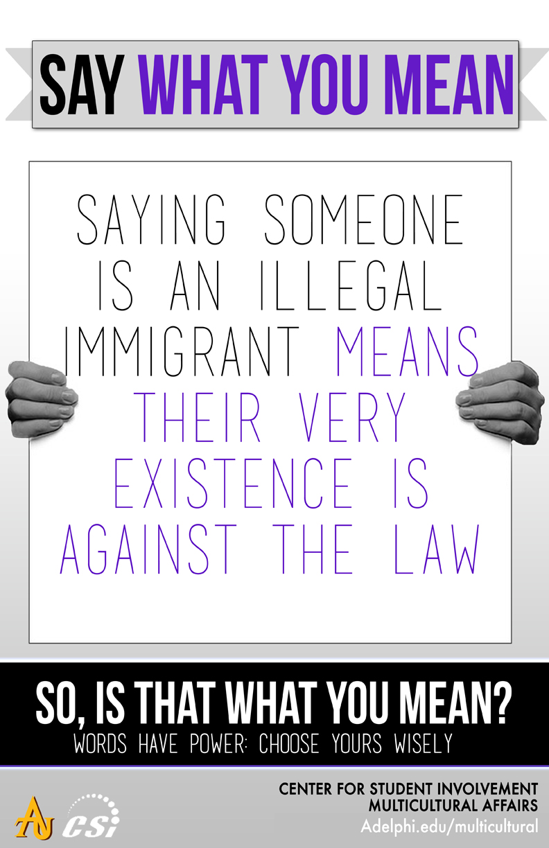 Say What You Mean - Illegal Immigrant
