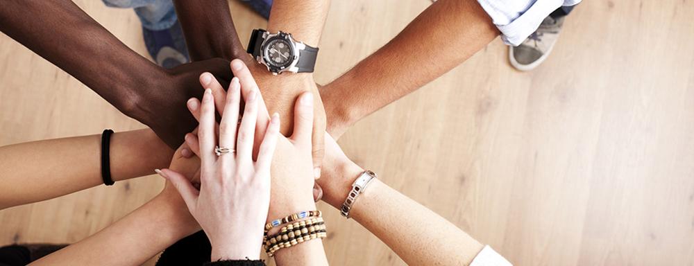 Participate in Adelphi's New Diversity Certificate Program