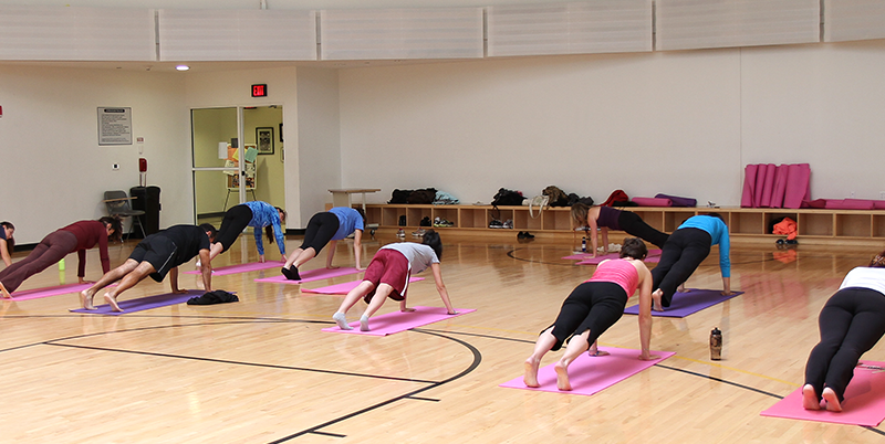 yoga at adelphi