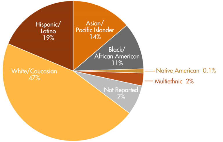 ethnicity-pie-chart-percentages