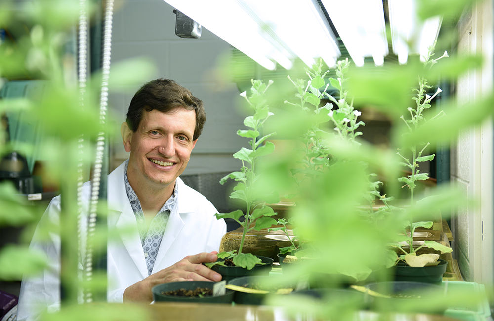 photo of Professor Heyl in a lab coat and surrounded by plants in a greenhouse