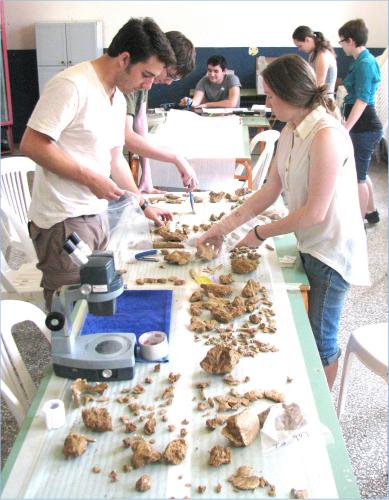 Adelphi anthropology students