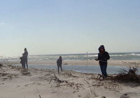Building a fence at Fire Island