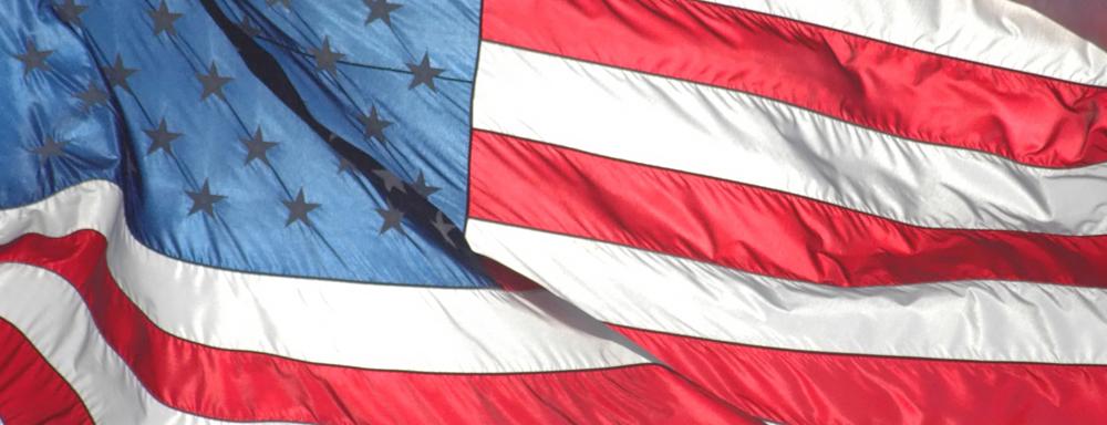 hero-vote-flag