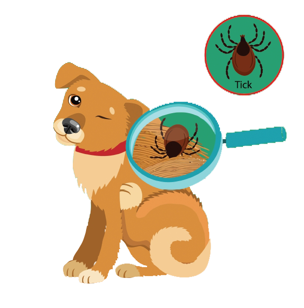 Cartoon image of dog with tick in its fur
