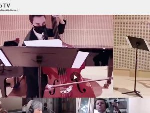 Musicians Celebrating the UNs 75th year - Screenshot of the virtual concert